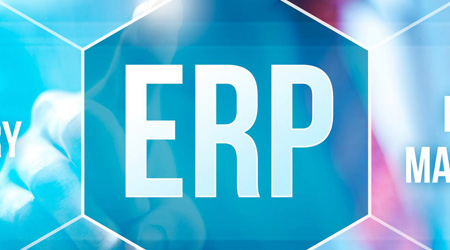 ERP & Software Consultancy